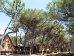 Camping Spina - Chalets, Adria, Italien